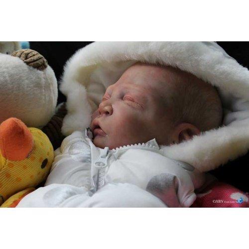 Sweet Pea Asleep by Laura Lee Eagles