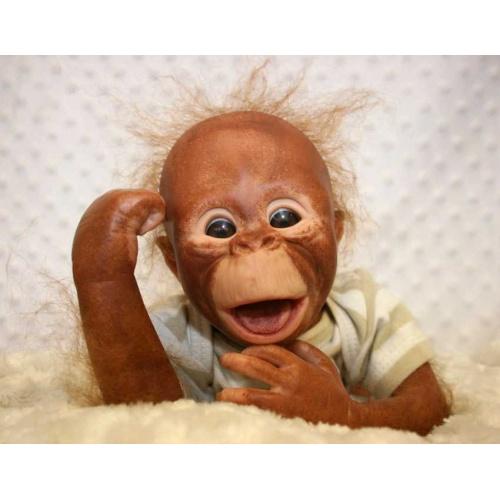 Binki Baby Orangutans by Denise Pratt!
