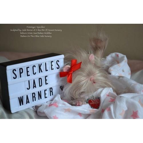 Speckles by Jade Warner (Kitten asleep)